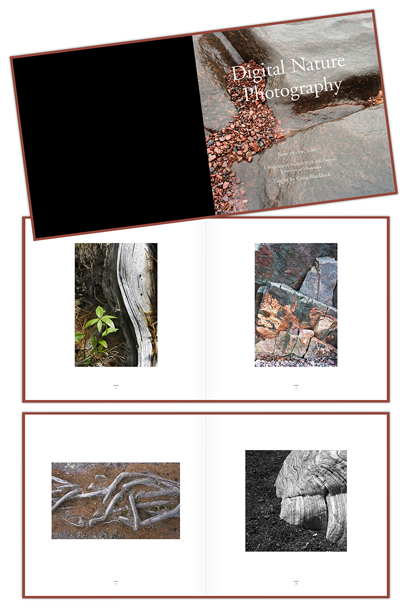"Three sample layouts of ""Digital Nature Photography"" book; graphic design by Carolyn Porter of Porterfolio, Inc."