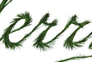"Close-up of letters ""err"" of word ""Merry"" made of evergreen; design by Carolyn Porter of Porterfolio, Inc."